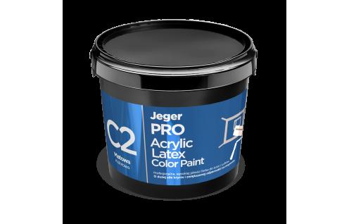 C2 Acrylic Latex Color Paint 10 L