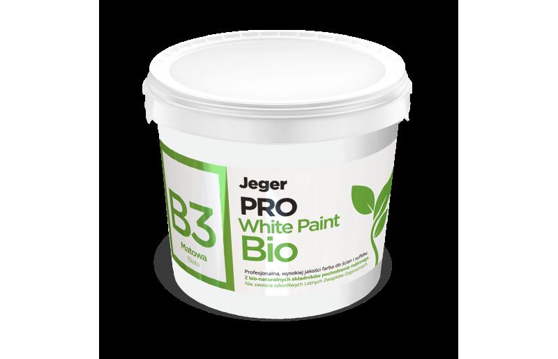 B3 White Paint Bio