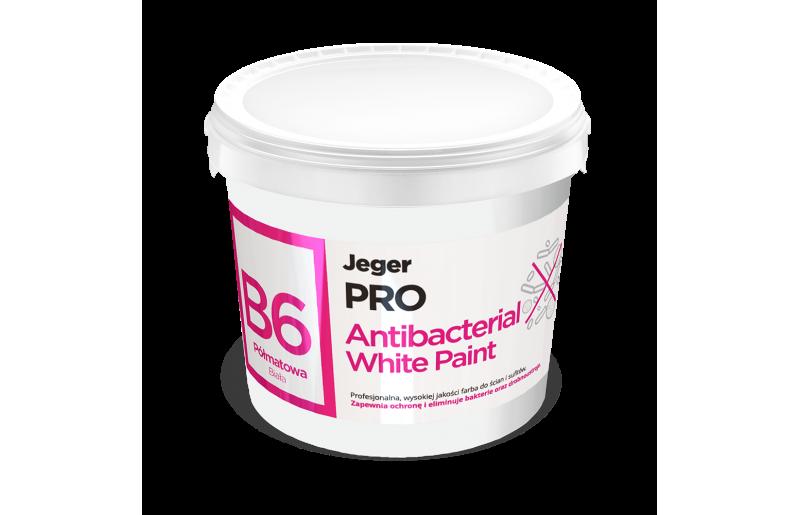 B6 Antibacterial White Paint