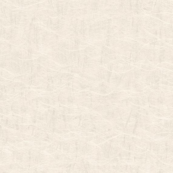 Tapeta w rolce - J53512